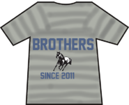Brothers since 2011 t shirt