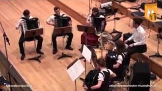 Sandstorm by Darude played on accordions.