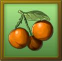 File:MAT fruit.png