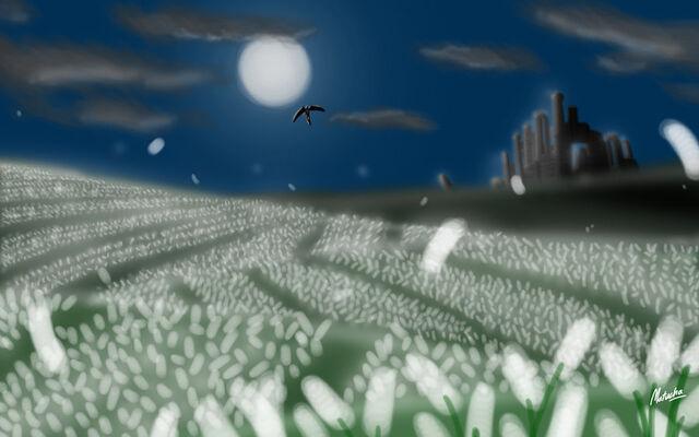 File:T5 moonlit wilderness by matucha-d3hvv6w.jpg