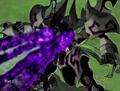 Paladinia Titan 2