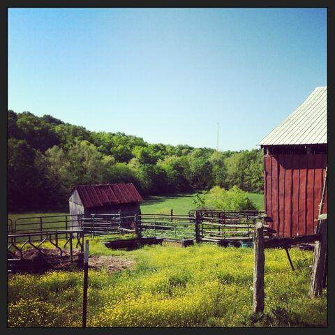 File:Beard farm barns.jpeg