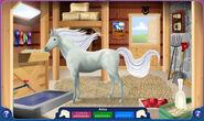 My Horse on Bella Sara Aviva