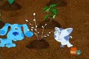 Let's Plant! 015