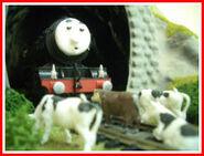 Nigel, Herbert and the Cows2