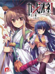 Light Novel Volume 13 (Front Cover)