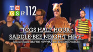 TCGS Half Hour Saddle-Bee Neigh-t Hive 0001