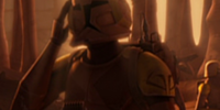 Unidentified Special Operations Clone Trooper