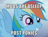 Mods are asleep PONIES