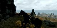 Skyrim Horse