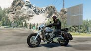 Indian Scout STREET