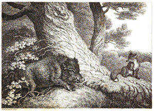 1. The Fox and Wild Boar