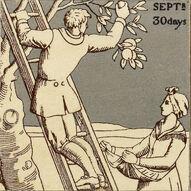 September43