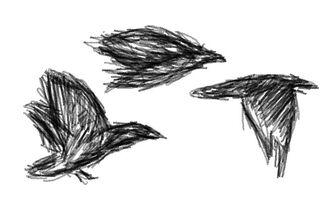Convocation-sketch