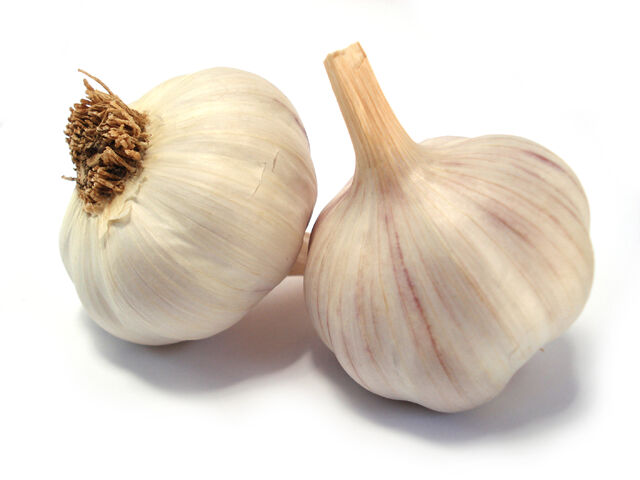 File:Garlic-06.jpg