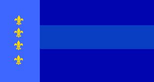 Random flag (tybersalternate)