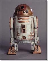 Alex's copper red R2-M7