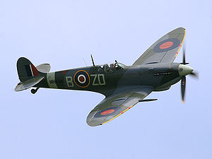 300px-Ray Flying Legends 2005-1
