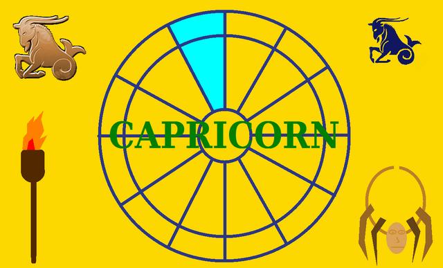 File:Capricorn Flag.png