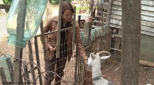 File:Goat-lady.jpg