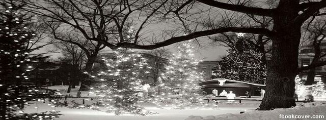 File:Cartoon-love-christmas-in-the-park-facebook-cover-hits-69030.jpg