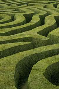 File:Maze2.jpeg