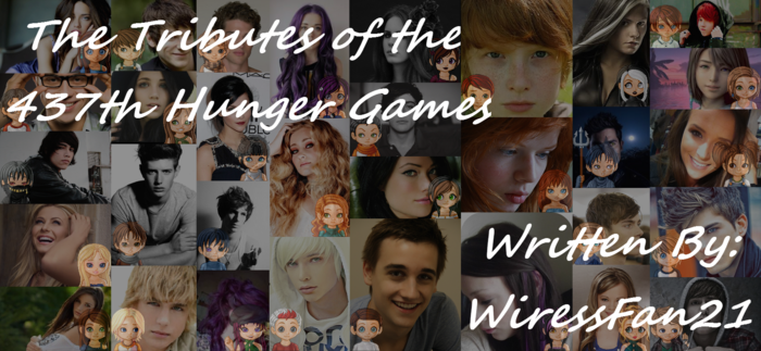 The 437th Hunger Games Banner
