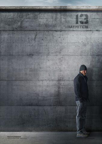 File:Haymitch character poster.jpeg