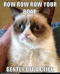 File:Grumpycat.jpg