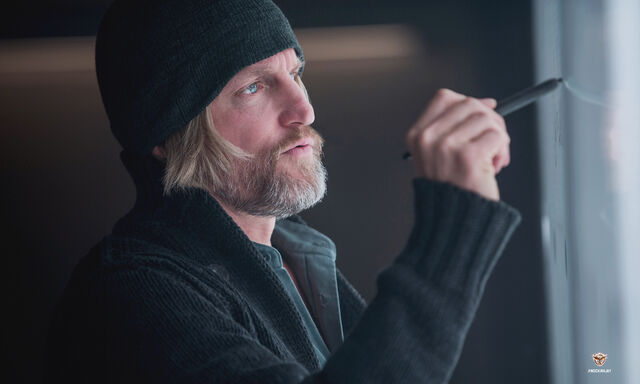 File:Haymitch Mockingjay 2.jpg