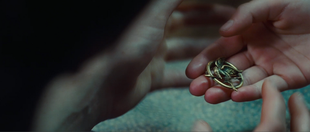 File:Mockingjaypin.png