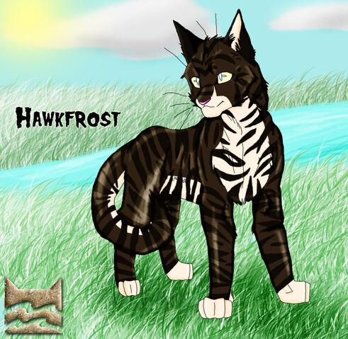 File:HawkFrost by FusionOverHype.jpg