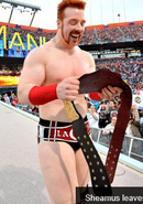 Sheamus with heavy weight chapion belt