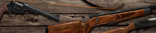 Header image weapons 1