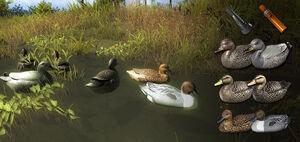 Duck decoys new1
