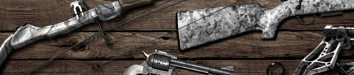 Header image weapons 6