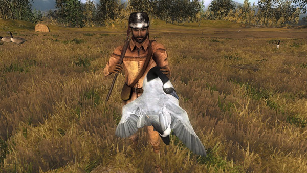 Itsfro light grey leucistic goose 8566