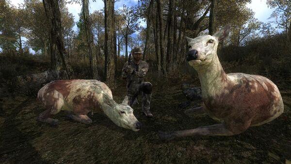 Latinjoker69 two piebald red deer