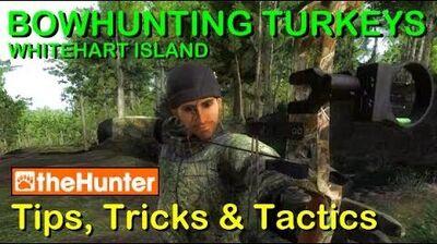TheHunter Tips, Tricks & Tactics - BOWHUNTING TURKEYS