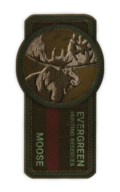 Achievement badge 5
