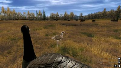 Goose decoys 1