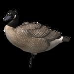 Decoy goose active 256