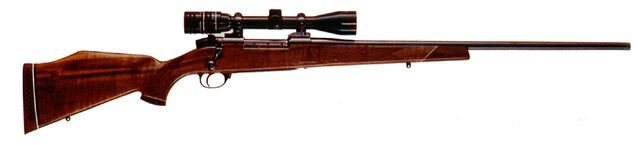 File:Rifle.jpg