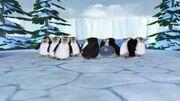 300px-Penguins