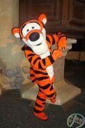 Disney park tigger