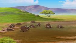 Vuruga Vuruga's Herd