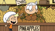 S1E18B Ha Ha! You're in pineapples!