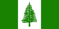 NIflag