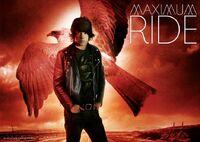 Fang-maximum-ride-31402671-737-523