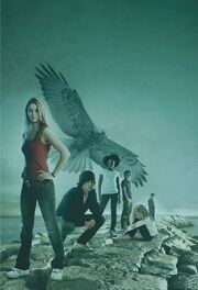 The Flock (Maximum Ride Facebook image)